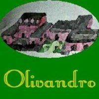 OLIVANDRO